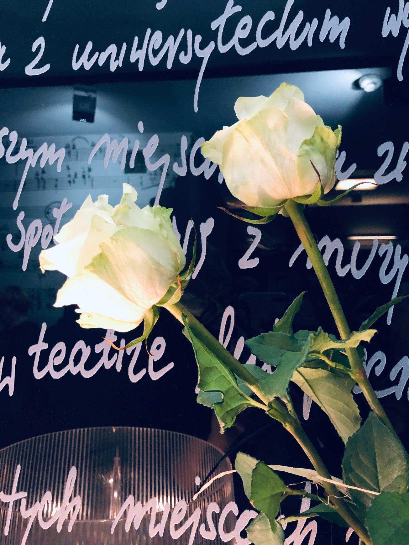 Kwiaty na tle ściany foyer Novej Sceny TM Roma